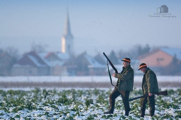Hunting in The Snow in The Heart of Europe (Slovakia –Veľký Grob)