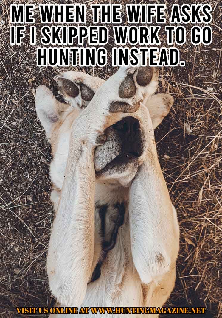Hunting Meme: Me When The Wife Asks If I Skipped Work to go Hunting Instead.