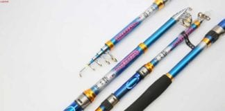 7 Reasons To Purchase The Best Telescopic Fishing Pole